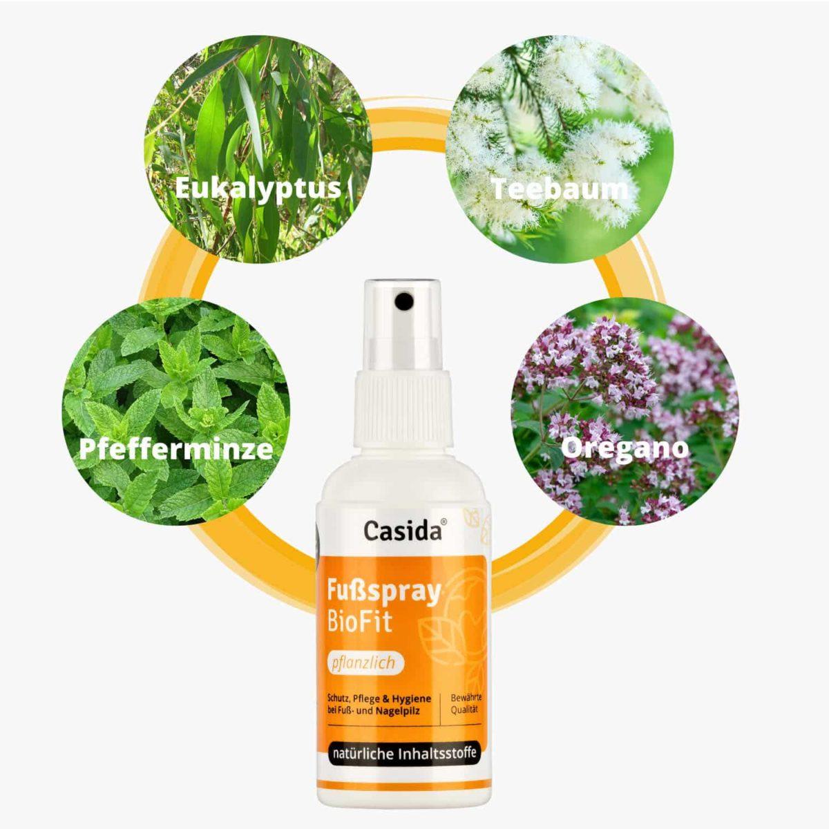 Casida Set Apotheke Nagelöl Fußspray Rabatt Bundle PZN 10022445 10751322 Nagelpilz pflanzlich Natürlich Gesundheitsprodukte2
