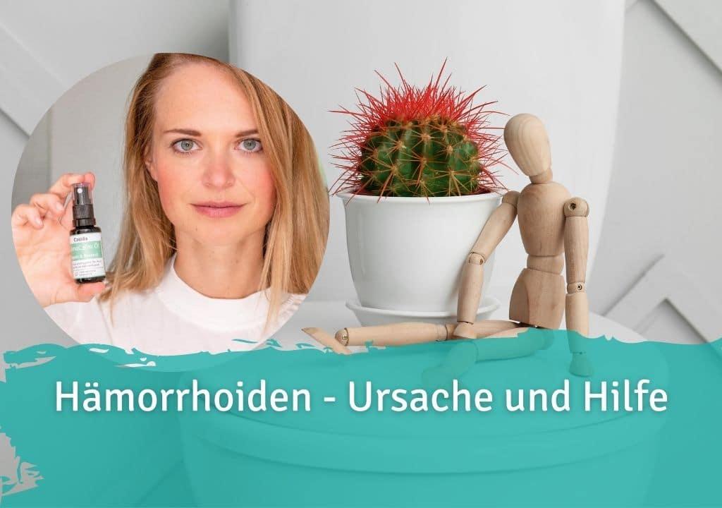 Hämorrhoiden - Ursache und Hilfe Casida HämoCalm Repair & Protect – 20 ml 10086675 PZN Apotheke hämorrhoiden hämmoritten hemoriden
