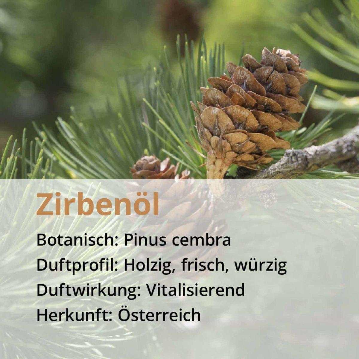 Casida Zirbenöl Pinus cembra naturrein – 10 ml 16486743 PZN Apotheke Zirbelkiefernöl ätherische Öle Diffuser3