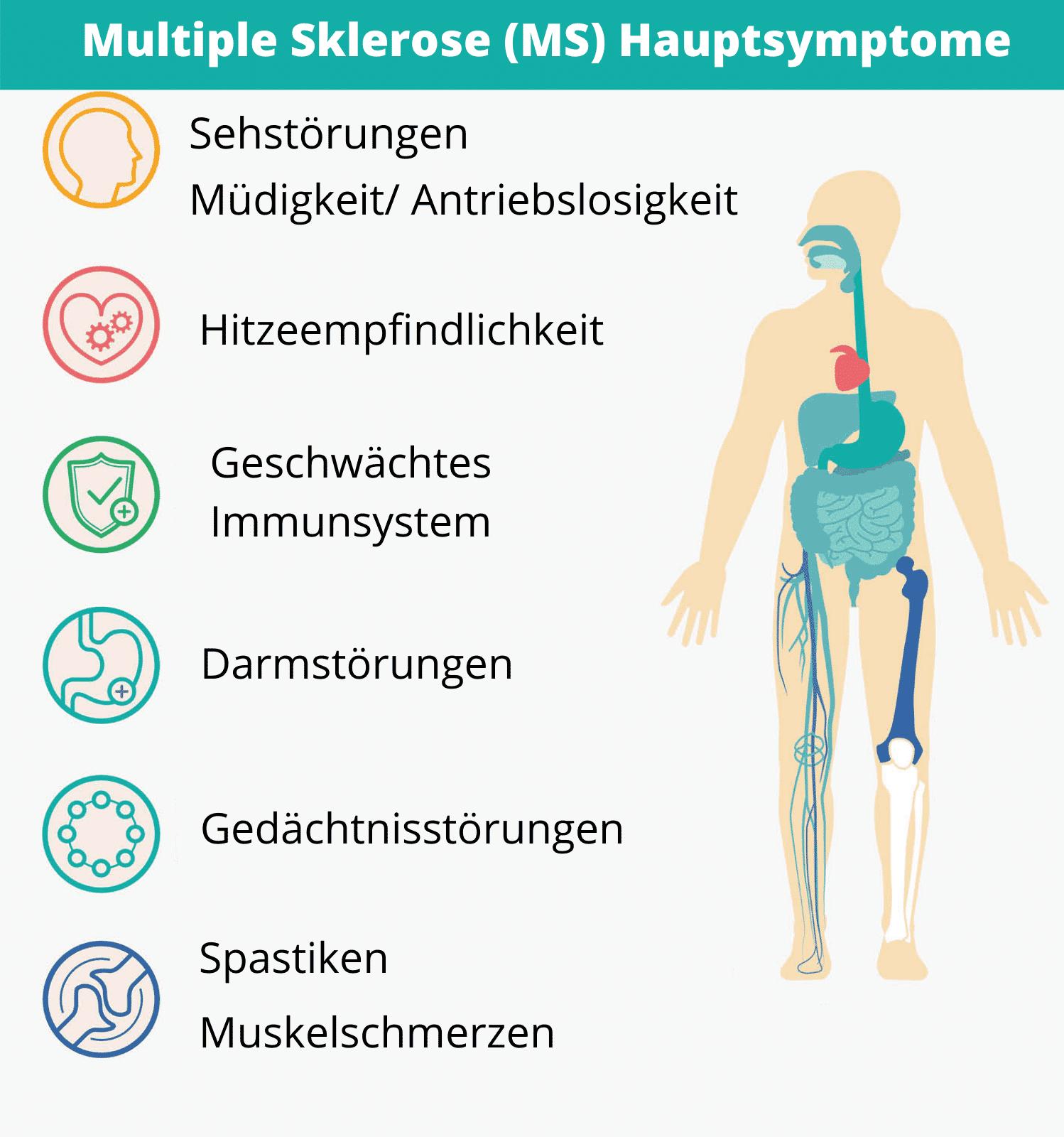 Multiple-Sklerose-MS-Hauptsyptome