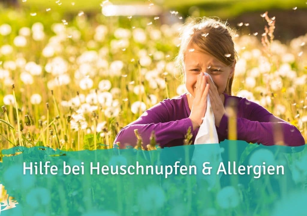 Hilfe bei Heuschnupfen & Allergien Casida Probiotika Kapseln Komplex + Inulin – 120 Stk. 14446656 PZN Apotheke Darmflora Darmmikrobiota Darmsanierung