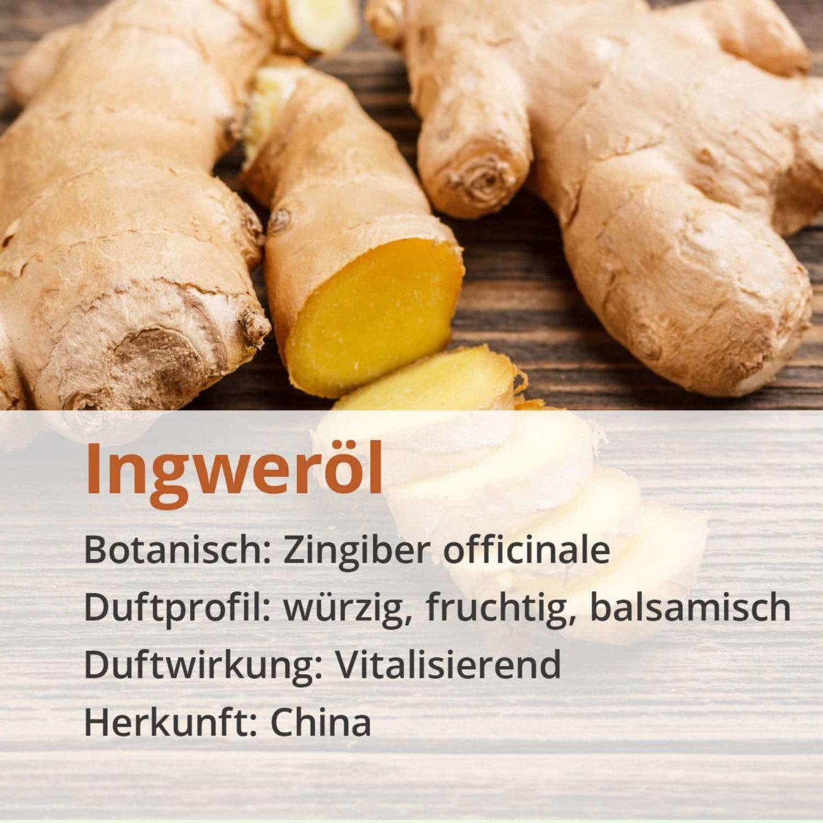 Casida natural pure ginger oil – 10 ml 17203776 PZN Apotheke ätherische Öle Diffuser Zingiber officinale3