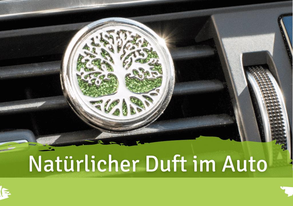Wunderbaum im Auto? Natürliche Alternativen